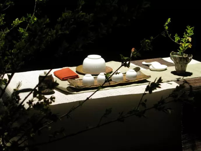 普洱茶图片 普洱茶的31种香味,你能闻出几种来?