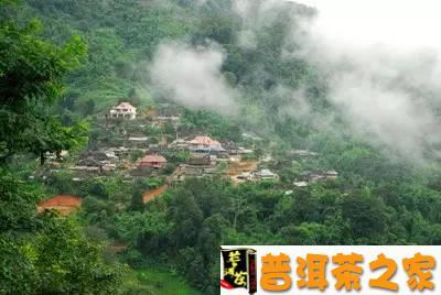 普洱茶图片 云南勐海——云南普洱茶的故乡