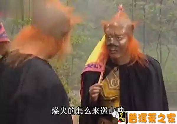 普洱茶图片 普洱茶山头文化背后的山头保护