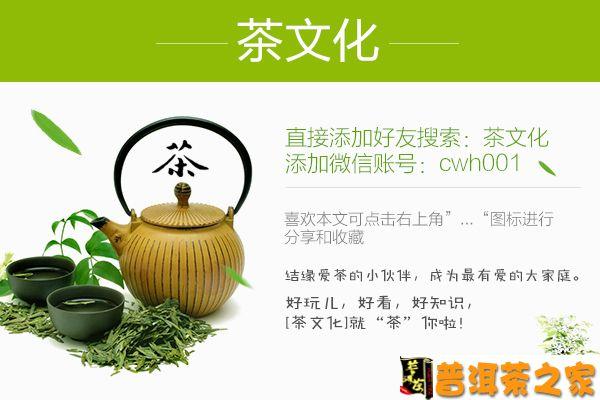 图文详解普洱茶冲泡方法与技巧